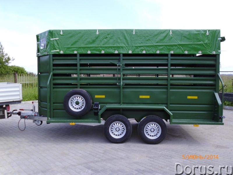 Прицеп для лошадей и КРС - Грузовые автомобили - Допустимая общая масса 3400 кг Грузоподъёмность 180..., фото 1