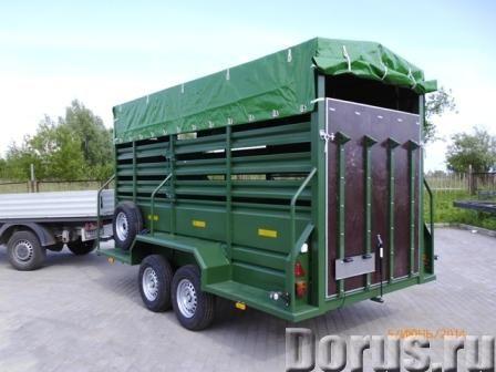 Прицеп для лошадей и КРС - Грузовые автомобили - Допустимая общая масса 3400 кг Грузоподъёмность 180..., фото 2