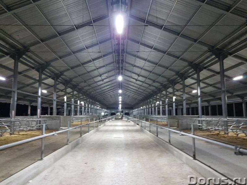 Ангар, склад, фрукто, зерно хранилища - Нежилые помещения, склады - Производим и строим здания под к..., фото 1